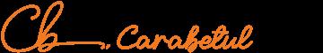 360×60-logo-carabetul-05